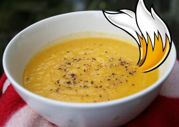 tails-the-fox-soup