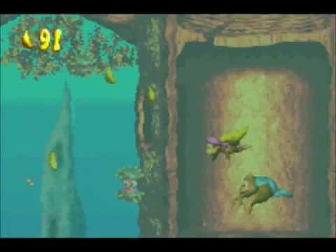 DKC3-Overlooked Donkey Kong