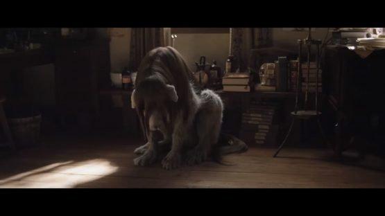 Fullmetal Alchemist Live Action Movie Gets English Subbed Trailer