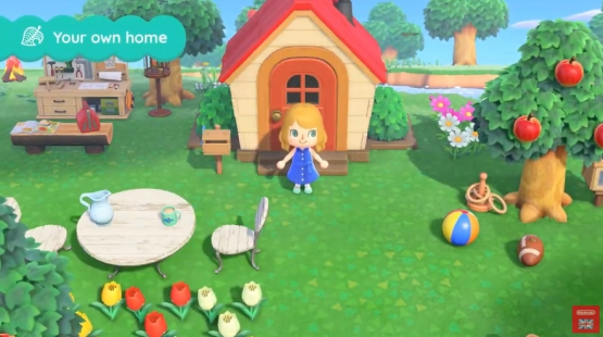 animal crossing new horizons amazon