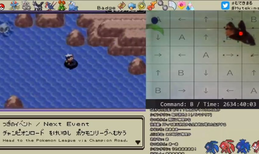Pet fish discovers major bug in Pokemon Sapphire